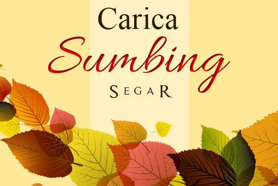 carica sumbing  Carica Dieng Label Kemasan Sendiri atau Perusahaan (Custom) carica sumbing